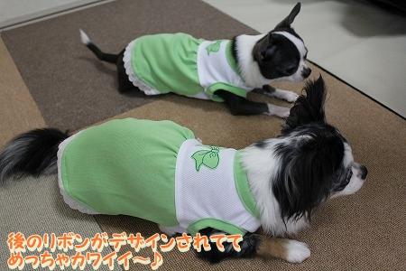 かわいい夏服♪ (8)
