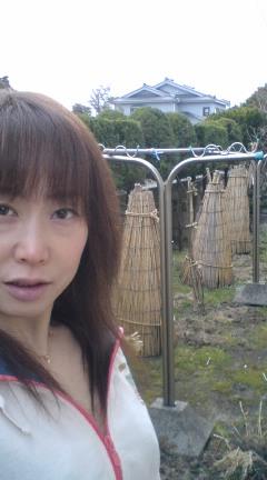 moblog_ce3ae474.jpg
