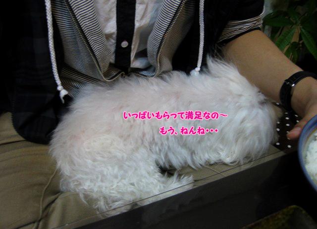 20120325-099n.jpg