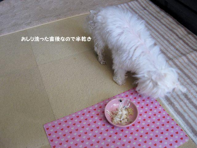 20120329-001.jpg