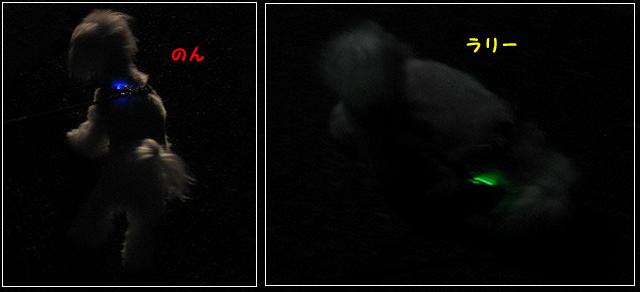 20120607-003.jpg