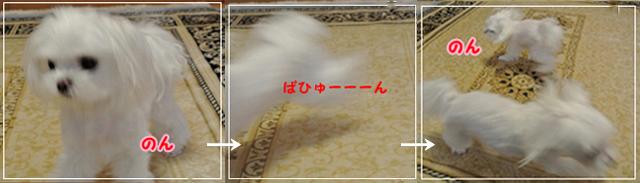 20120818-1200.jpg