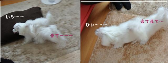 20120929-016.jpg