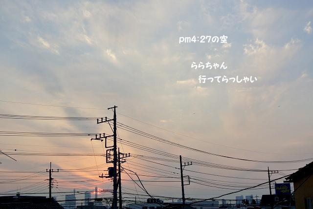 20130109-065.jpg