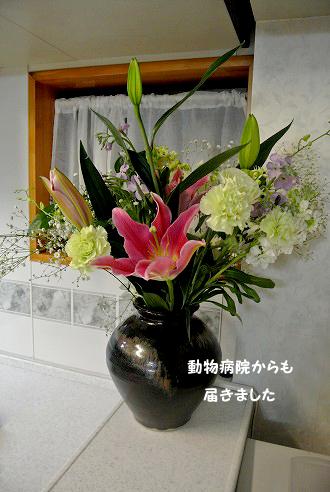 20130111-041.jpg