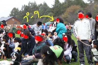 big_convert_20101020111159.jpg