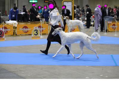 snap_makoboko0224_20101218365.jpg