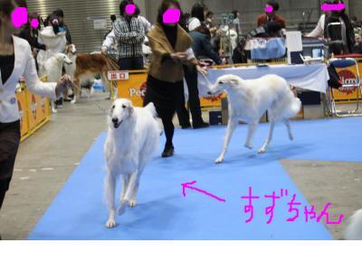 snap_makoboko0224_20101219011.jpg