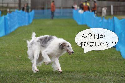takizawa2_convert_20101027104602.jpg