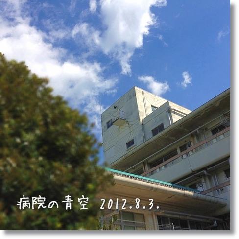 20120803-02.jpg