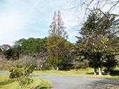 fp-20121008-24s.jpg