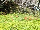fp-20121008-28s.jpg