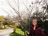 fp-20121008-31s.jpg