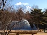 fujigoko-20130112-23s.jpg