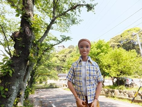 gifu-20120505-34s.jpg