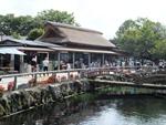 hananomiyako-20120908-02s.jpg