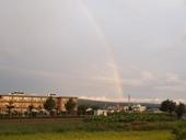 higanbana-20120923-01s.jpg