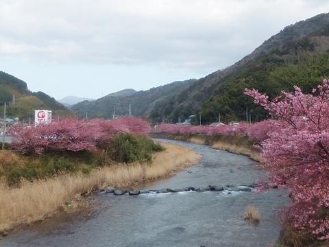 kawadu-20130302-03s.jpg