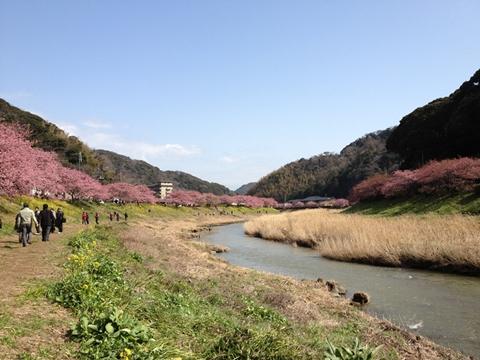 kawadu-20130302-35s.jpg