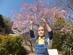 nijinosato-20120407-12s.jpg