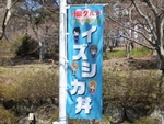 nijinosato-20120407-21s.jpg