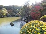 nijinosato-20121118-15s.jpg
