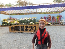 rakujyuen20111112-08s.jpg