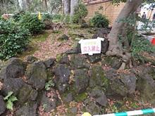 rakujyuen20111112-12s.jpg