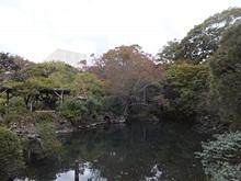 rakujyuen20111112-15s.jpg