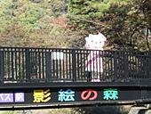 yamanashi-20121103-10s.jpg