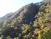 yamanashi-20121103-37s.jpg