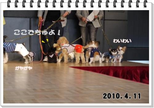 130_20101207210823.jpg