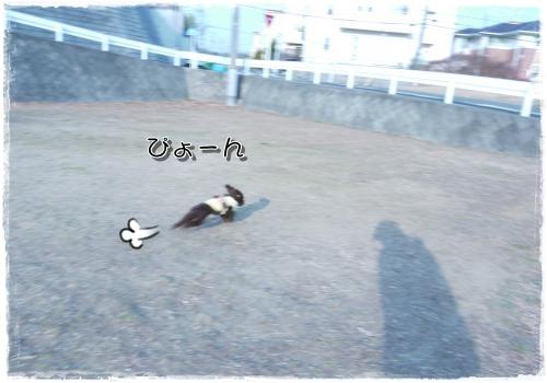418_20110130205405.jpg