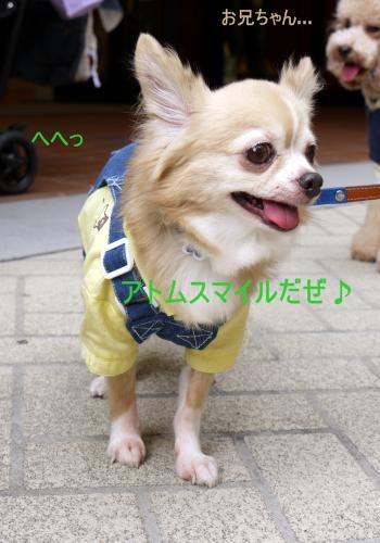 438_20101017203107.jpg