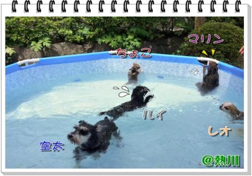 504_20110116190633.jpg