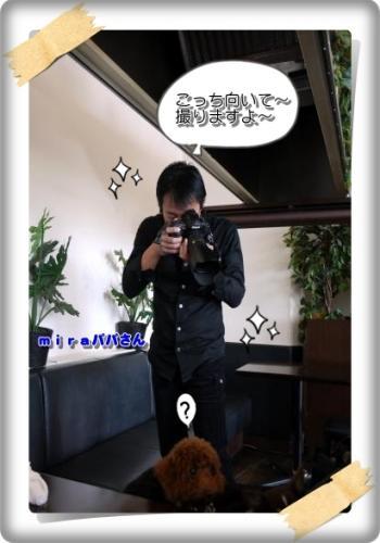 740_20110110125934.jpg