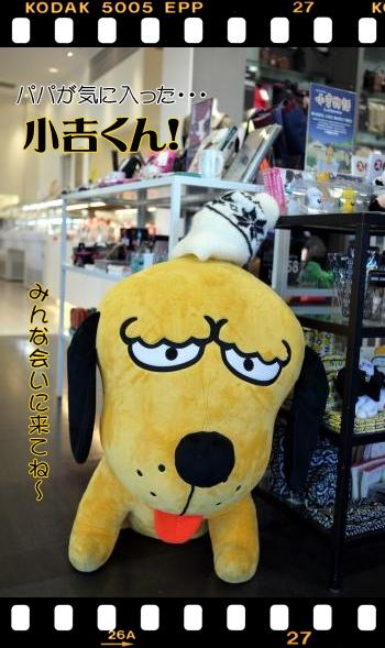 811_20101103210249.jpg