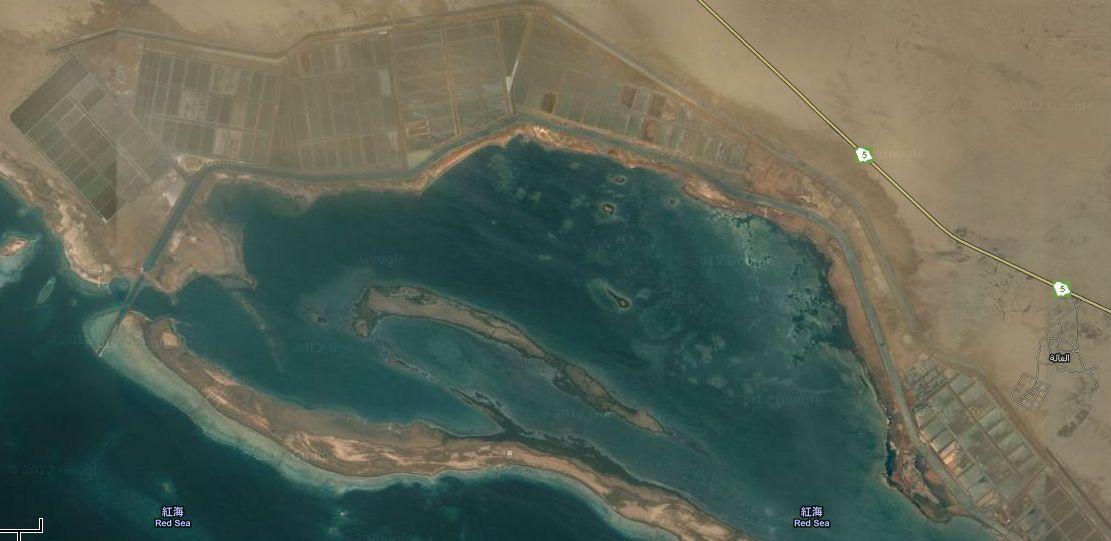 エビの養殖場2012052801