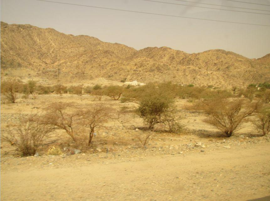 AlQablyah付近3