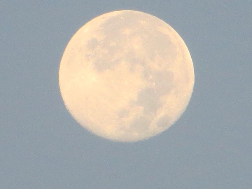 夜明けごろの満月