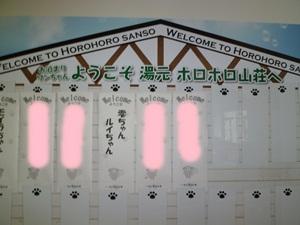 2011_0709_144716-P1000793-crop.jpg