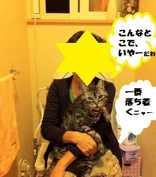 IMG_0159.jpg
