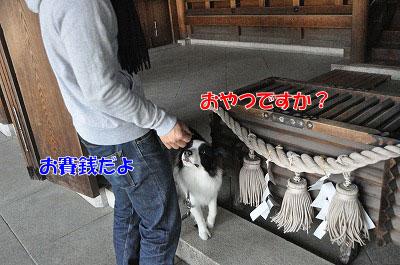 201104-saku1102.jpg