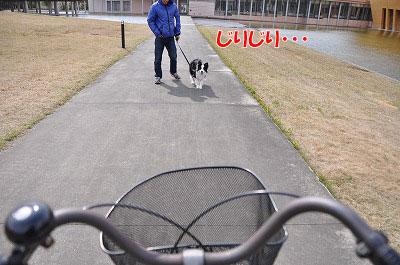 201104-sanp02.jpg