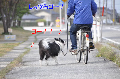 201104-sanp03.jpg