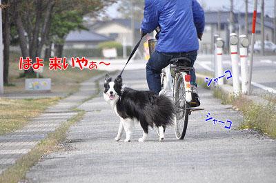 201104-sanp04.jpg