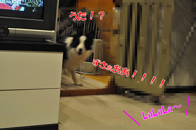 201104-uta1201.jpg