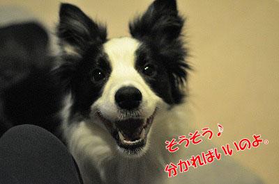 201104-uta1204.jpg