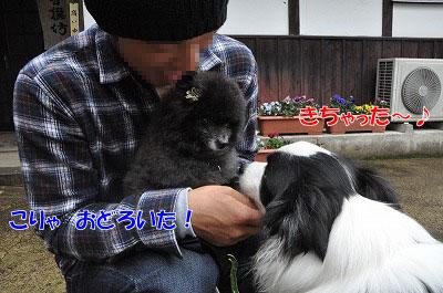 20110501-kisen01.jpg