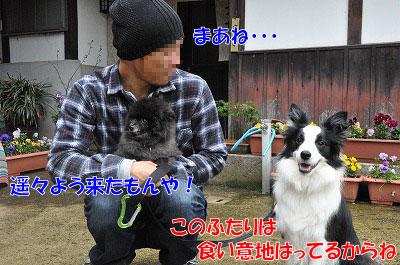 20110501-kisen02.jpg
